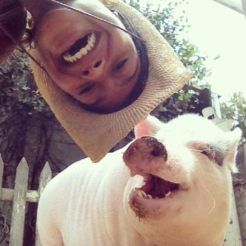 Pig Selfie LOL