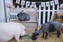 Farm Love