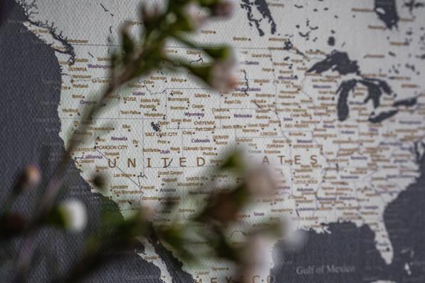 Tamsiai pilkas žemėlapis ant drobės