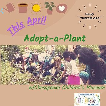 Adopt a plant.jpg