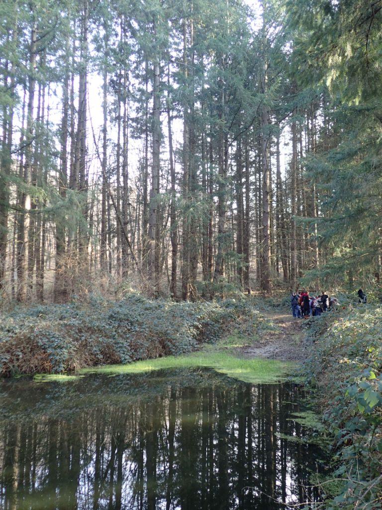 On se marre en forêt ...