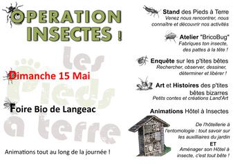 Opération Insectes - Dimanche 15 Mai - Foire Bio de Langeac