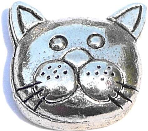 Cat - Face