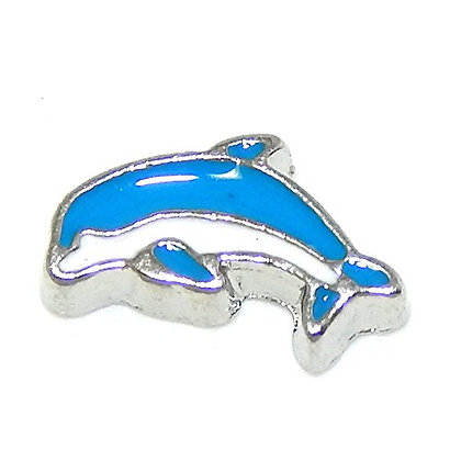 Dolphin - Blue