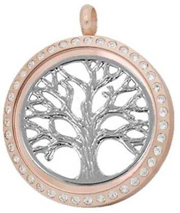 Locket - Family Tree
