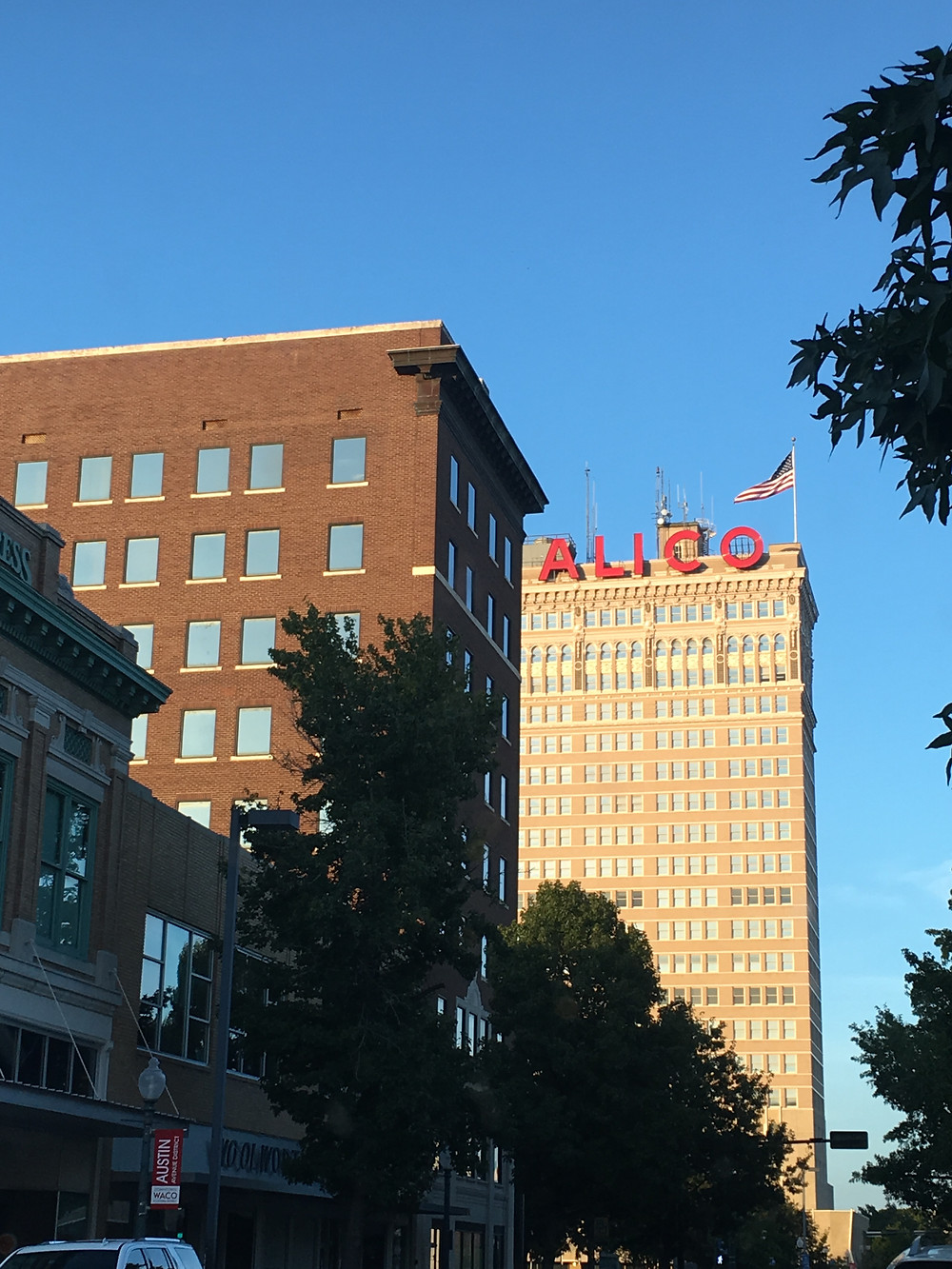 the Alico Building