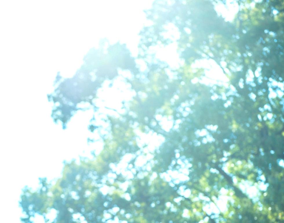 048_edited_edited_edited.jpg