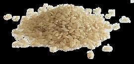 うるち玄米