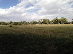 Land for sale 14 Acres in Peralta, New Mexico listed with Nino Trujillo and Compny by Realtor Nicole Golino.
