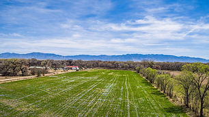 8.59 Acres of Residential Lot or Farmland for Sale in Belen, New Mexico listed with Marisa Chavez at Nino Trujillo and Company.