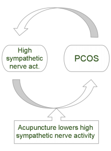 Acupuncture PCOS Effect