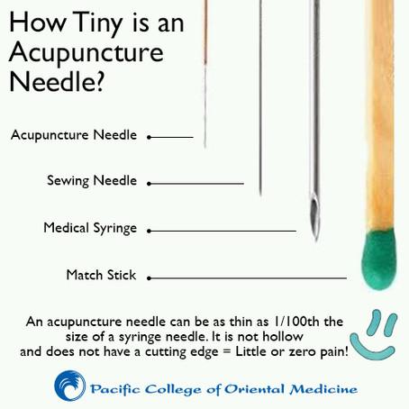 Tiny Needles!