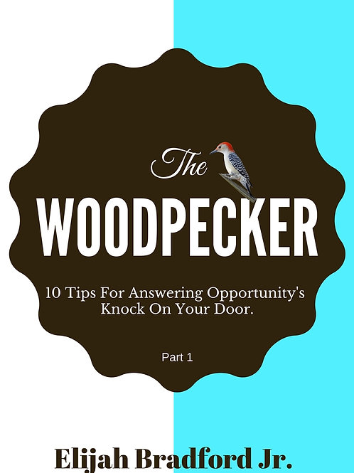 The Woodpeker: 10 Tips To Answer Opportunity's Knock On Your Door