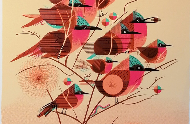 Graham Carter - 'Carmine Bee Eaters' Limited Edition Print