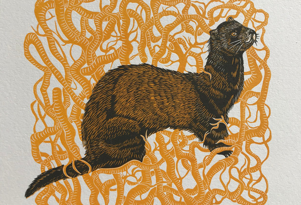 Cally Conway - 'Polecat and Ivy Roots'