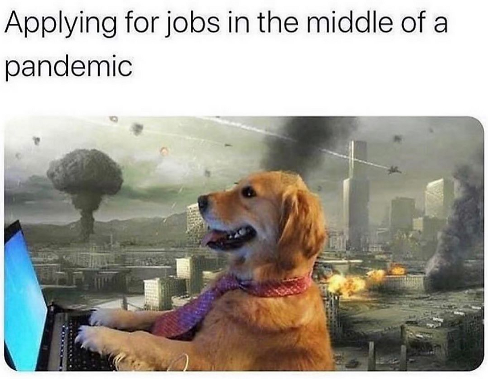 applying for a job in the middle of a pandemic