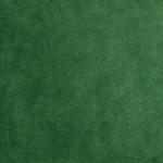 Evergreen Cuddle