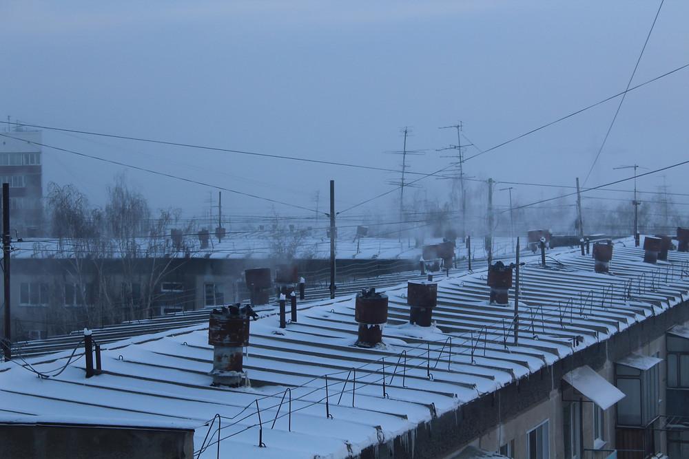 Голуби на улице зимой