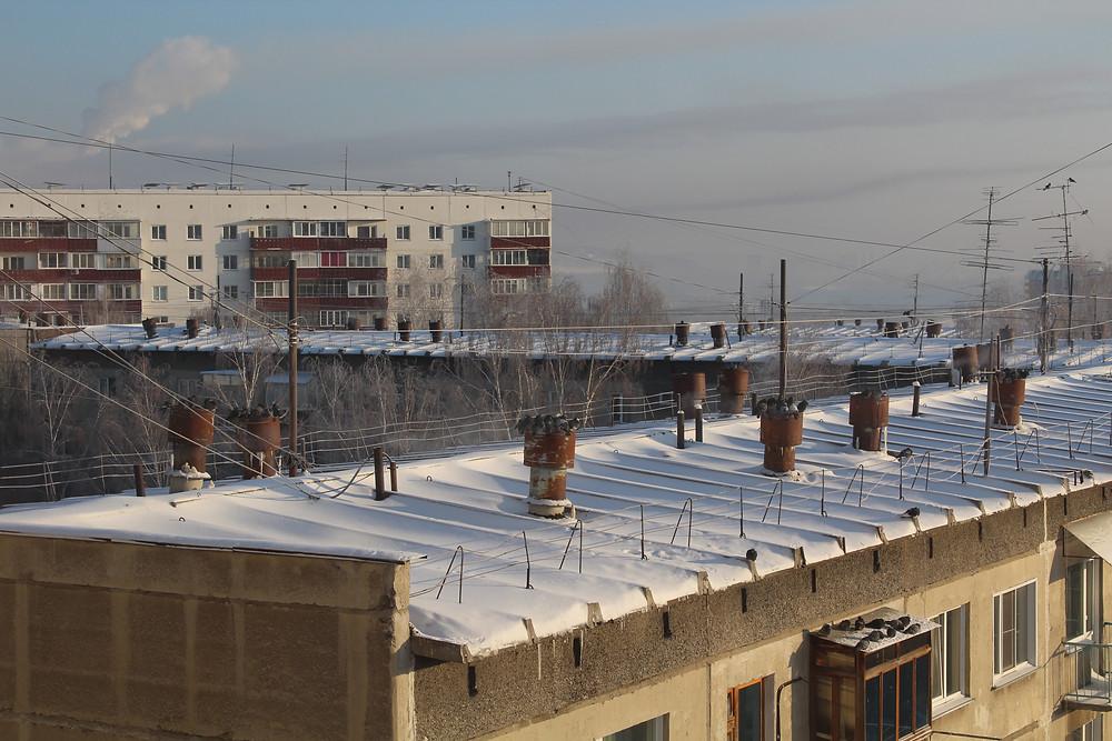 Уличные голуби на крыше зимой