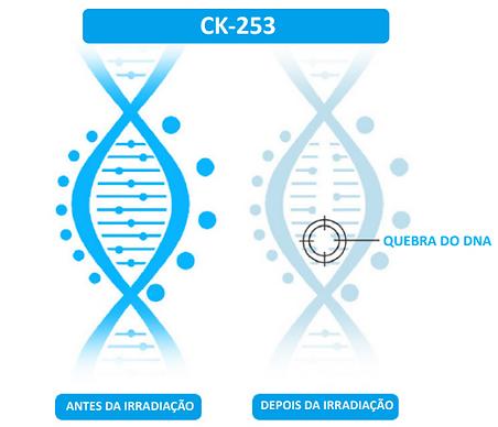 CK 253.png