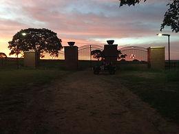 Fazenda Arco Verde - SP