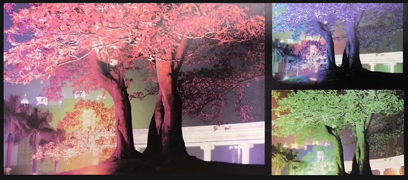 URANO RGB CASE.png