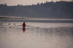 Single Rowing Burnaby Lake