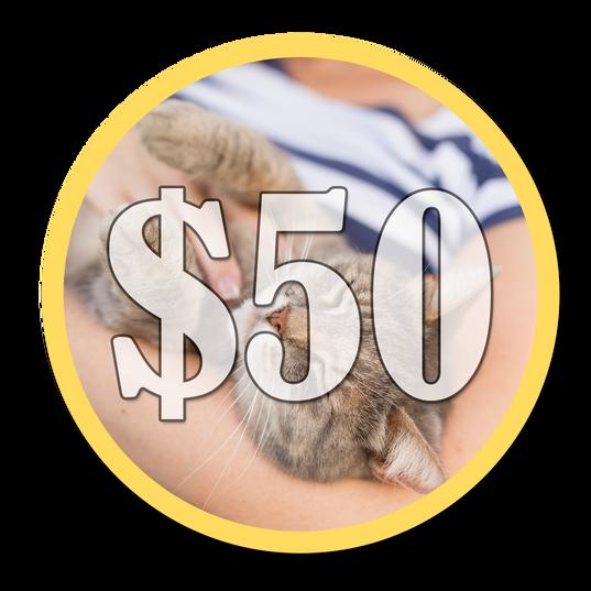 Make A $50 Donation