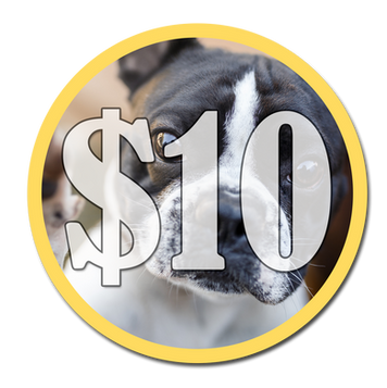 Make A $10 Donation