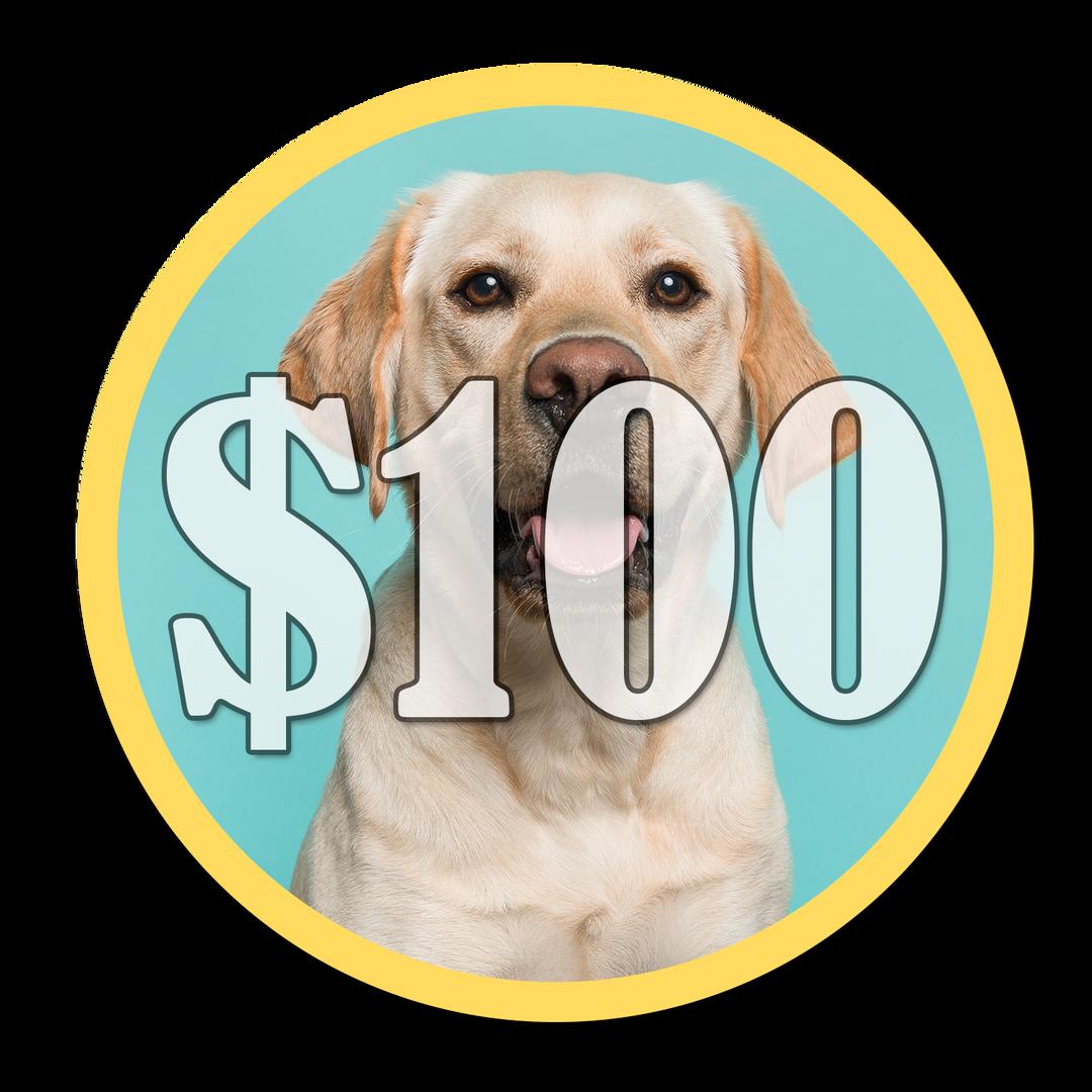 Make A $100 Donation