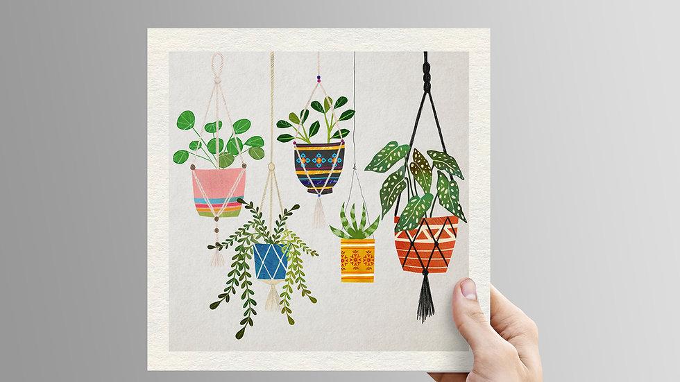 Hanging Plants - unframed print
