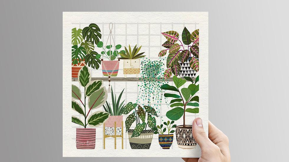 Plant Shelfie -unframed print