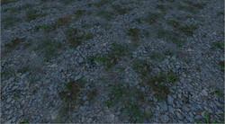 Rocks and weeds.jpg