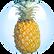 Phytelene of Pineapple Fruit Extract.png