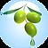 Olive Fruit Oil - 18.01.2016.png