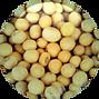 Soya-bean-150x150.png