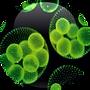 Euglena-Gracilis-Extract-18.01.2016-150x