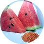 Watermelon-Lentil-Fruit-Complex-18.01.20
