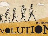 3 reasons why the theory of evolution magic