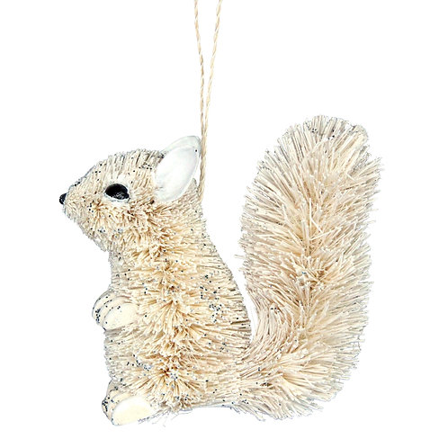 White Bristle Squirrel