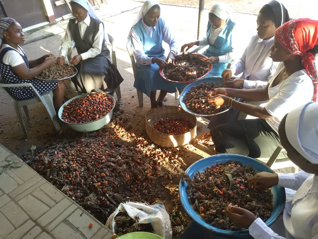 Sisters sorting and preparing palm nuts for making cooking oil, soap, and other end products.