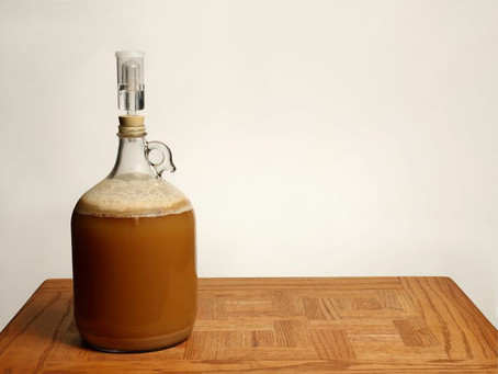 On the Road to Berlin: The Tiny, Busy World of Fermentation