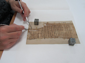 The Fifth Papyrus Curatorial and Conservation Meeting - 20-21/06/2019, Dublin (Ireland)