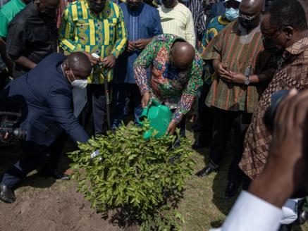 Ghana goes Green