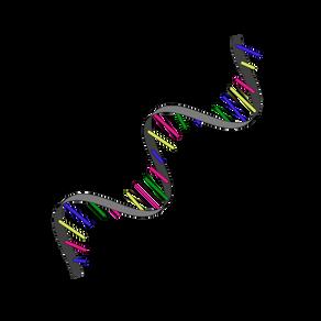 Eureka 75 - RNK i budućnost lečenja