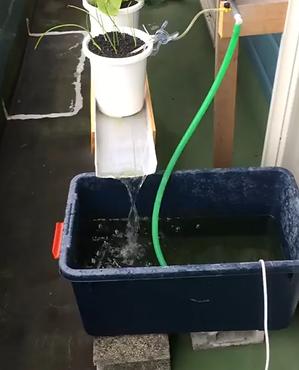 溶液タンク