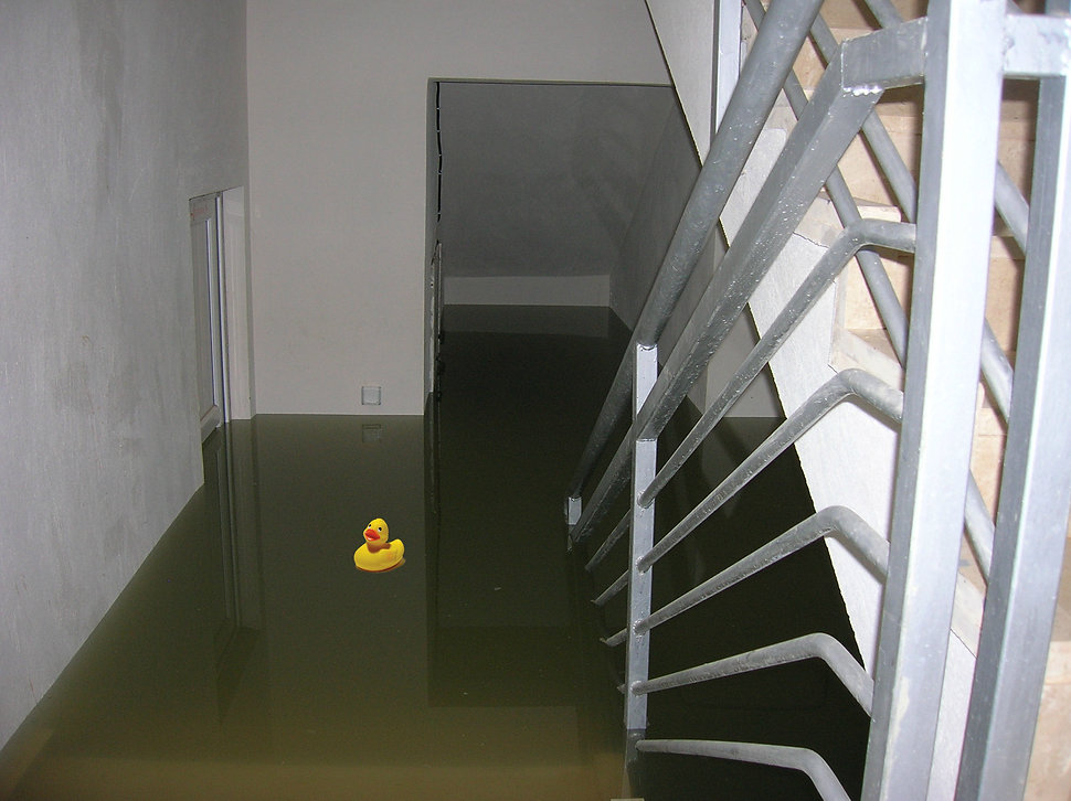 Basement_Water Intrucion_Duck.jpg