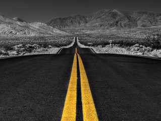 Business Measurement: The Road to Success