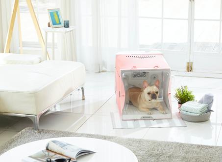 韓國代購 寵物吹乾房 貓貓狗狗合用