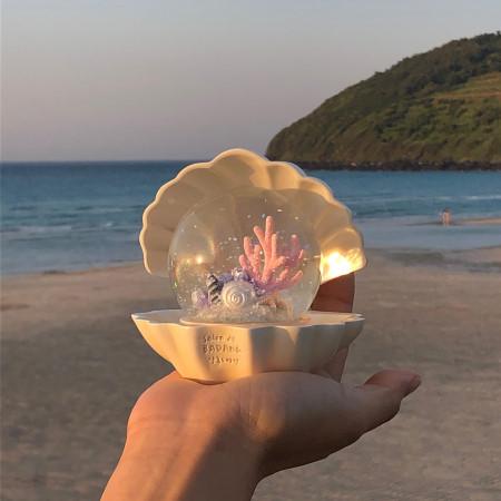 以珍珠白色的貝殻裡放著晶瑩通透的水晶球